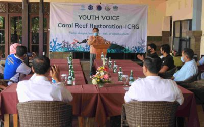 Youth Voice – ICRG 2020